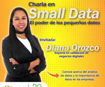 EL VALOR DE LOS SMALL DATA